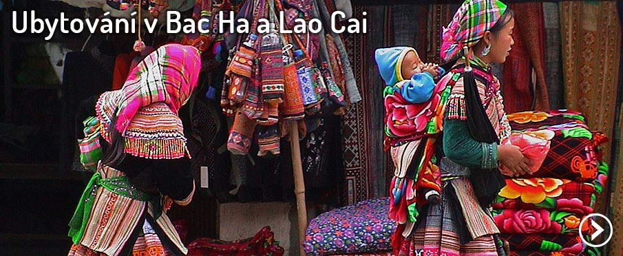 vietnam-bac-ha