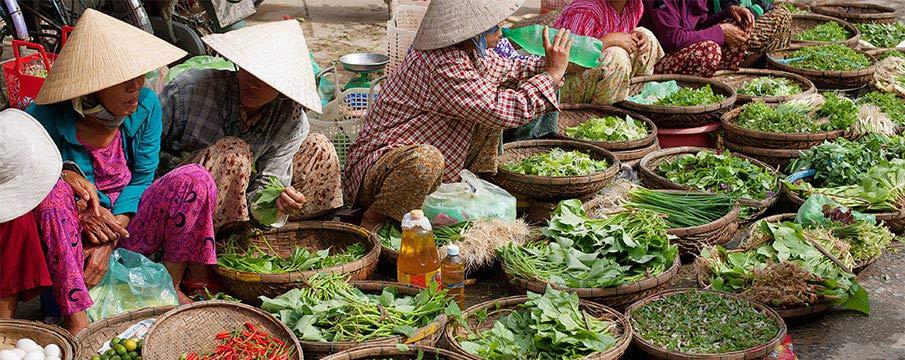 vietnam-bylinky-trh