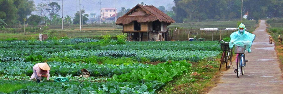 vietnam-doprava-kolo