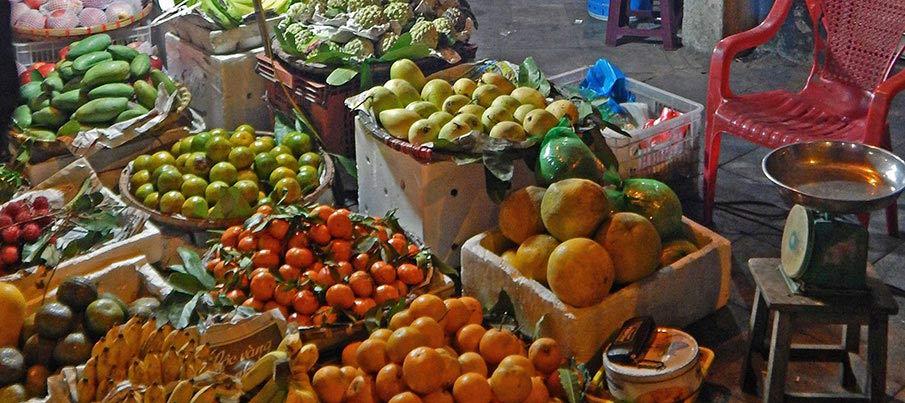 vietnam-jidlo-ovoce