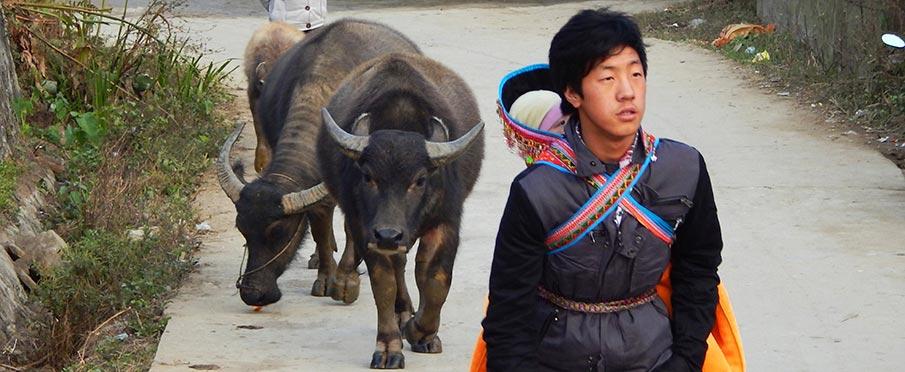 etnicka-skupina-hmong-vietnam