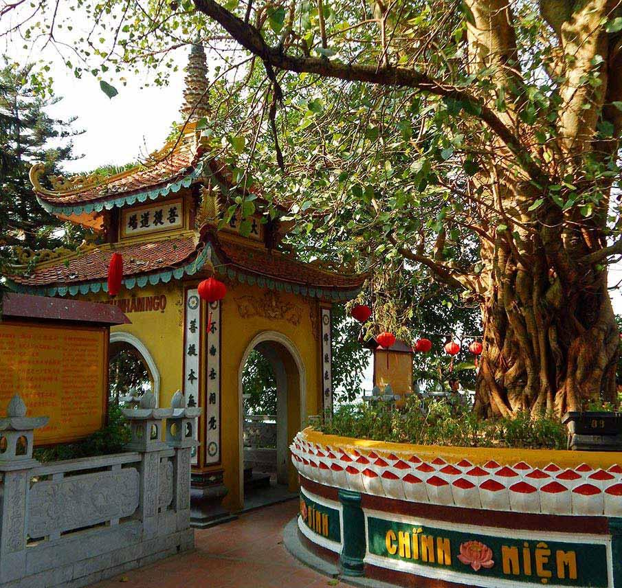 tran-quoc-pagoda-hanoj6