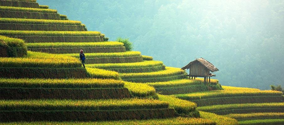 vietnam-mu-cang-chai
