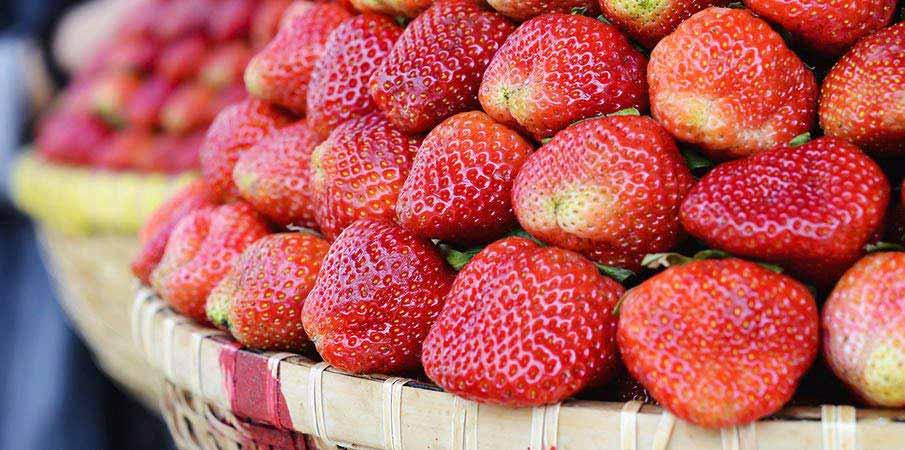 dalat-vietnam-jahody