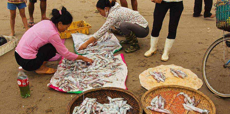 thanh-hoa-vietnam-rybari