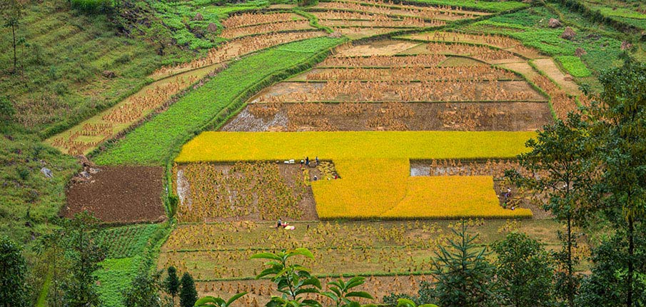 lung-cu-vesnice-dong-van1