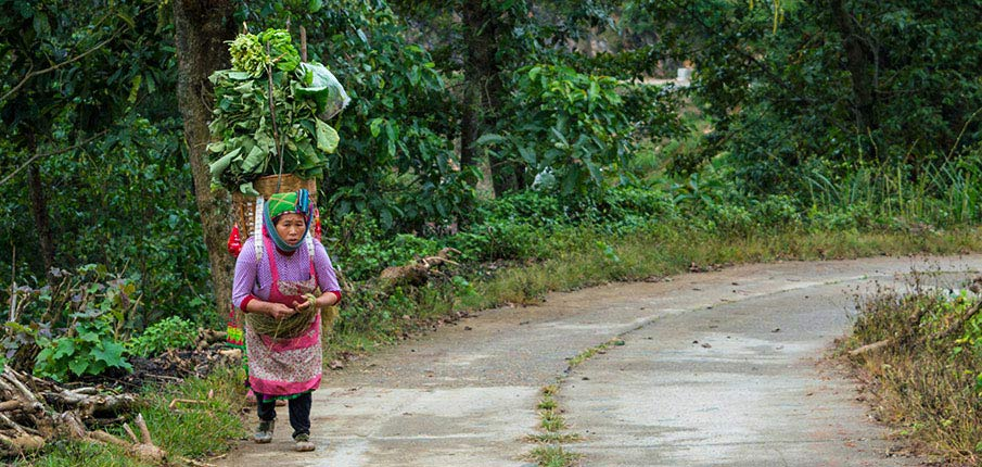 lung-cu-vesnice-ethnic-minority