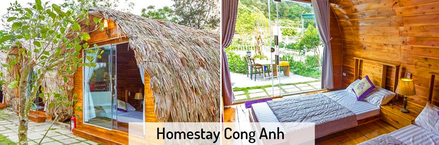 homestay-cong-anh-co-to-island