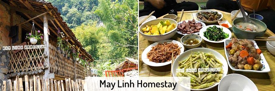 may-linh-homestay-ban-gioc-vietnam