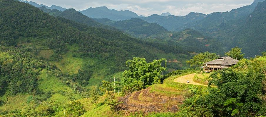 bao-lac-xuan-truong-vietnam