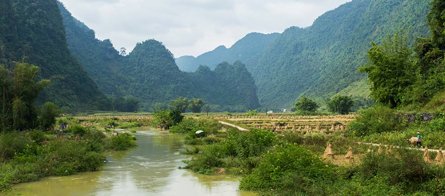 phong-nam-cao-bang-vietnam6