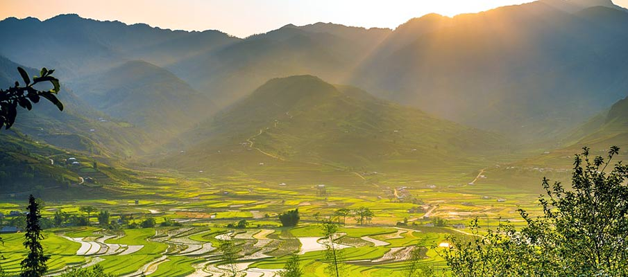 tu-le-khau-pha-prusmyk-vietnam