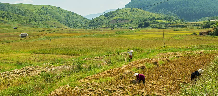 tu-le-valley-yen-bai-vietnam2