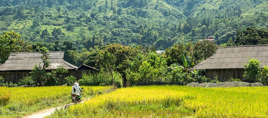 tu-le-valley-yen-bai-vietnam5