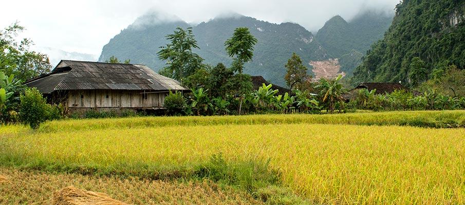 xuan-truong-bao-lac-vietnam4