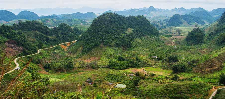 plantaze-moc-chau-vietnam
