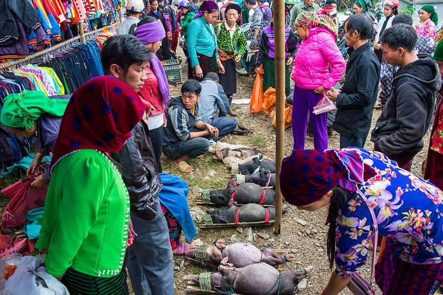 etnicky-market-tam-son-quan-ba-vietnam