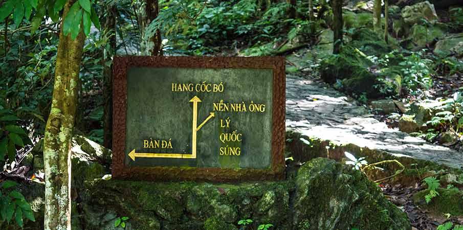 pac-bo-cao-bang-cedule-cesta