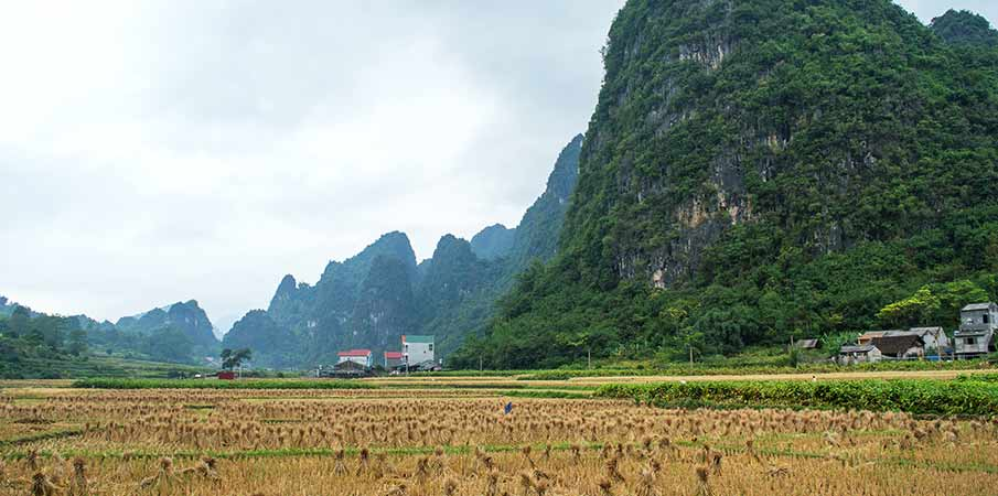 prusmyk-ma-phuc-vietnam-cao-bang
