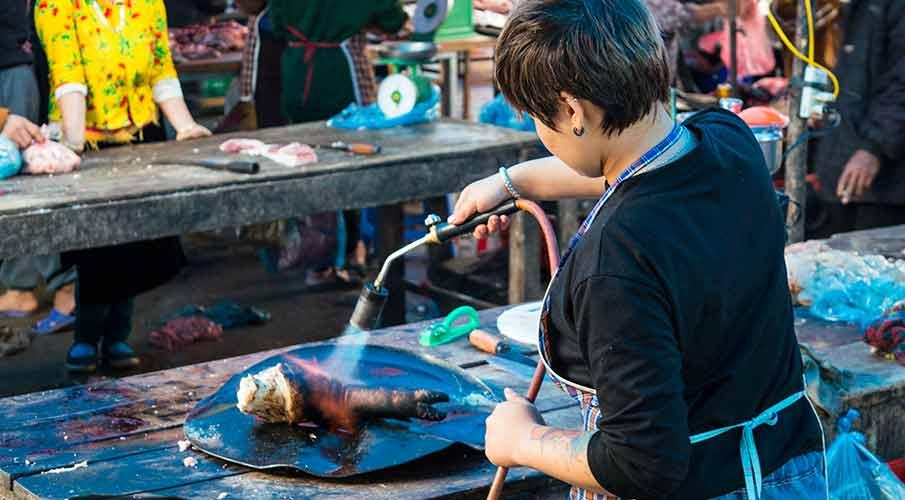 tam-son-market-jidlo-vietnam